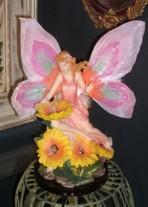 Faerie Amp Fairy Lights Sunlight Studio Australia